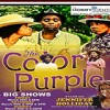 "In Houston: Jennifer Holiday to star in musical — ""The Color Purple"""