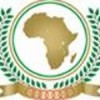 African Ambassadors gather in Washington, DC celebrate African unity and focus on the future